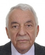 פרופ' יוסף גייגר